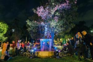 FILUSA2018-INTERVENCION-LUMINICA-2
